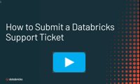 Logging a support ticket